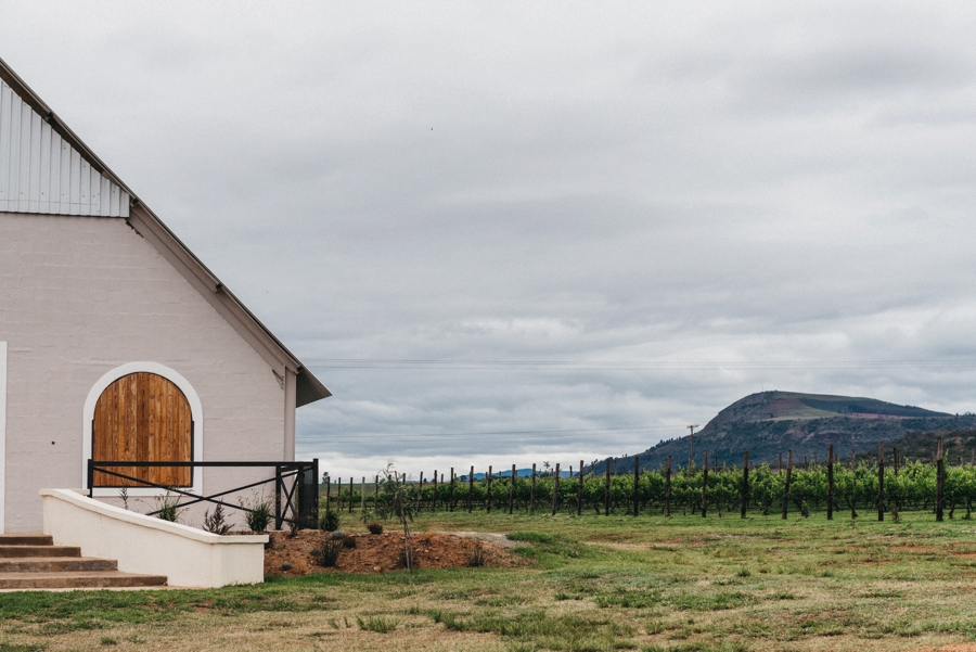 Kate Martens Photography_Carmen&Vernon,Cathederal Peak Wine Estate_0002