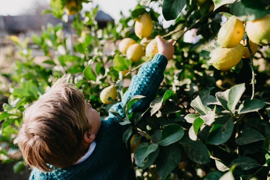 Kate Martens Photography_Van Den Berg Family_0005